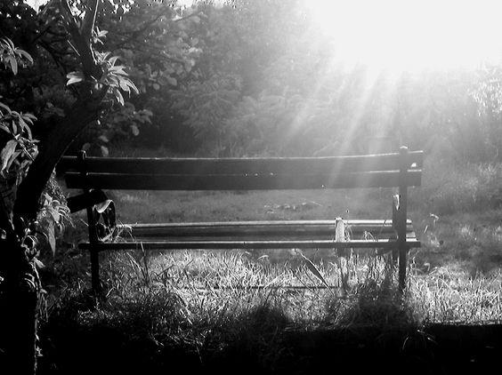 Hidden Places - Chair b & w photo
